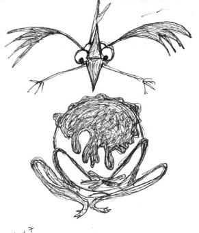 bird-encounter-6
