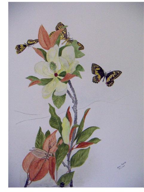Magnolia.2