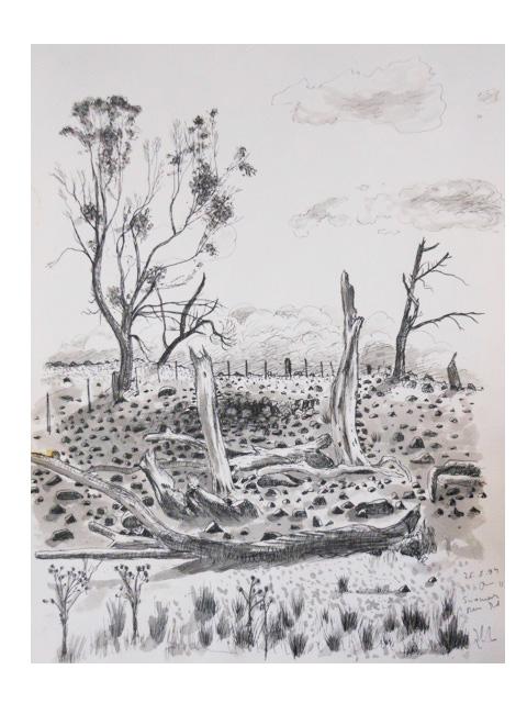 Austral.Landschaft2